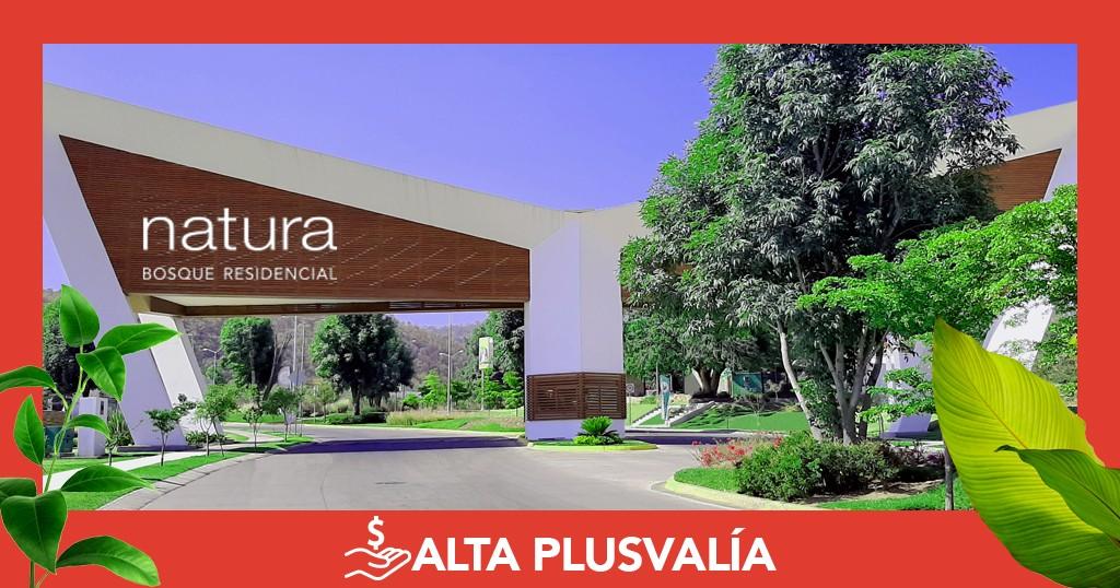 Alta Plusvalía